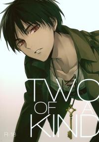 Shingeki no Kyojin - Two of a Kind (doujinshi)