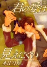 Kimi No Ai Wa Mienikui manga