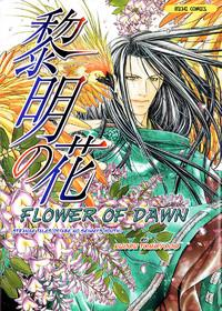 Seinenki Abenoseimei Ibun: Reimei No Hana