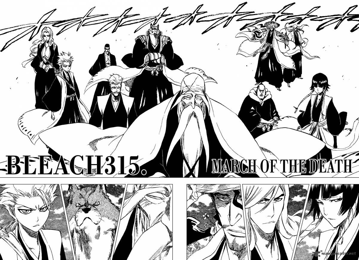 Bleach 315